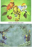 Rasta Chameleons Greeting Card