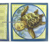 Magnetic Sea Turtle Puzzle