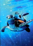 Dad and Child Sea Turtle Father's Day Card