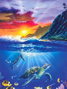 Turtle Sunset Blank Card