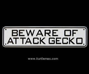 """Beware of Attack Gecko"" Sign"