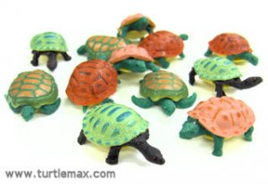 Stretchy Colorful Turtle Toys (12)