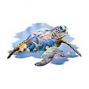"""Turtle Kingdom"" T-Shirt  (Adult)"
