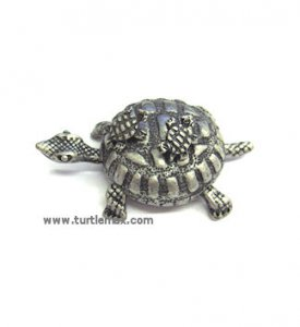 Pewter Turtle Box w/ Necklace & Earrings