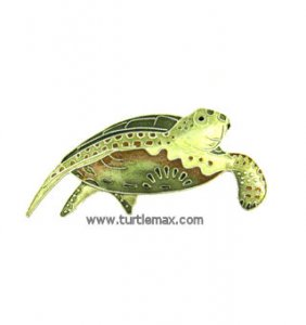 Green Sea Turtle Sterling Enamel Pin