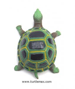 Green Stretchy Tortoise
