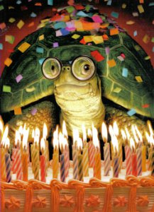 Tortoise & Hare Birthday Card