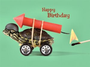 """Have a Blast"" Turtle Birthday Card"